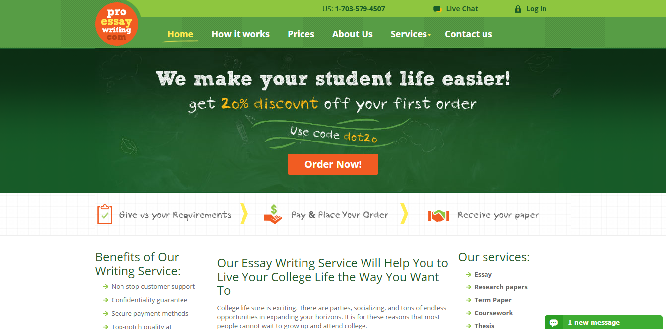 proessaywriting com review write my essays org proessaywriting com review